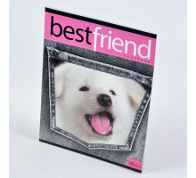 "Тетрадь 48л ""VK.Best Friends"" 48Т5C1 Hatber"